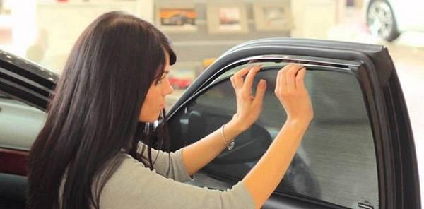 Используем сетку для стекол автомобиля вместо тонировки с фото